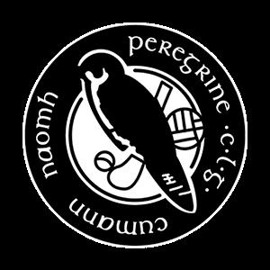 St Peregrine's GAA